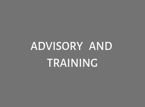 What is advisory and training services